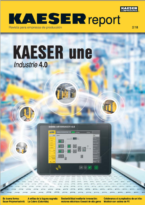 reporte kaeser 2019